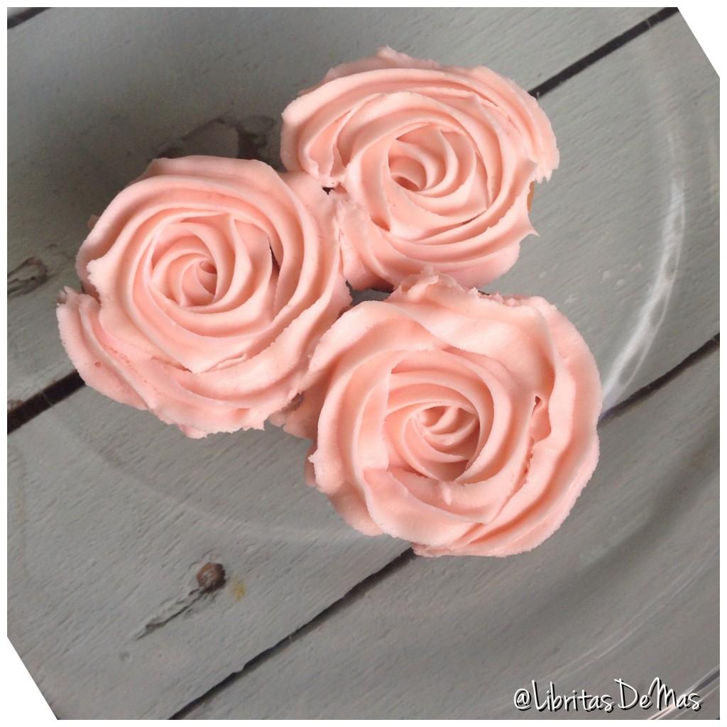 Libritas_ cupcakes_de las gemelas