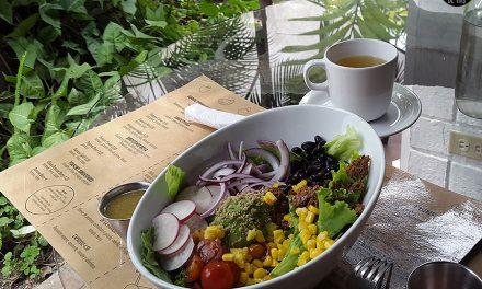 Vegana por 1 día…. Y ½! – DAY 2 – Soya Nutribar