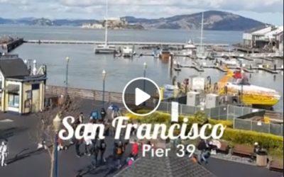 ¡El PIER 39 de SAN FRANCISCO! EL CIOPPINO